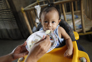 Duck eggs help mothers feed malnourished children