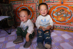 Tackling nutrition during natural disasters in Mongolia