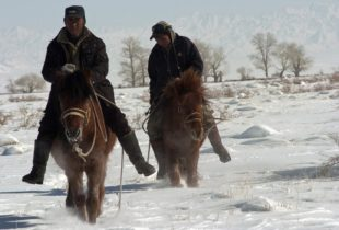 Children bear the cost of extreme weather: New evidence from Mongolia
