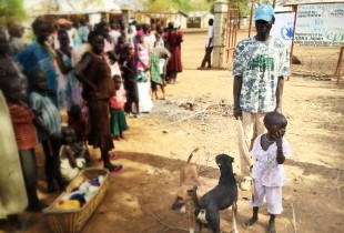 Three-year-old Nyakhat and her father Pal wait outside the registration site with their two loyal dogs, Tuchal and Nyadet in Pagak, Upper Nile, South Sudan.