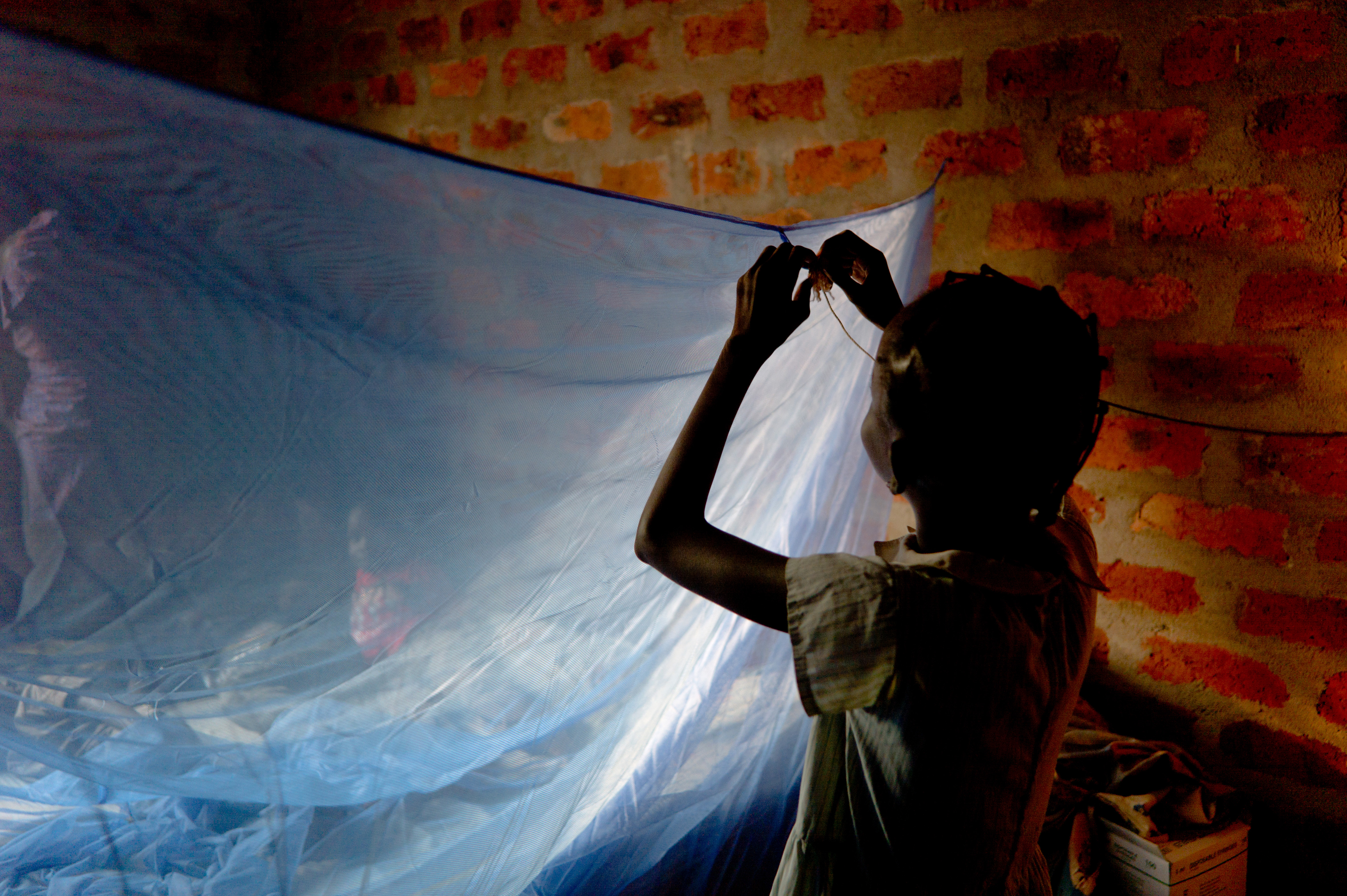 A girl places a mosquito net over her bed.