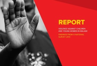 Violence against Children and Young Women Survey