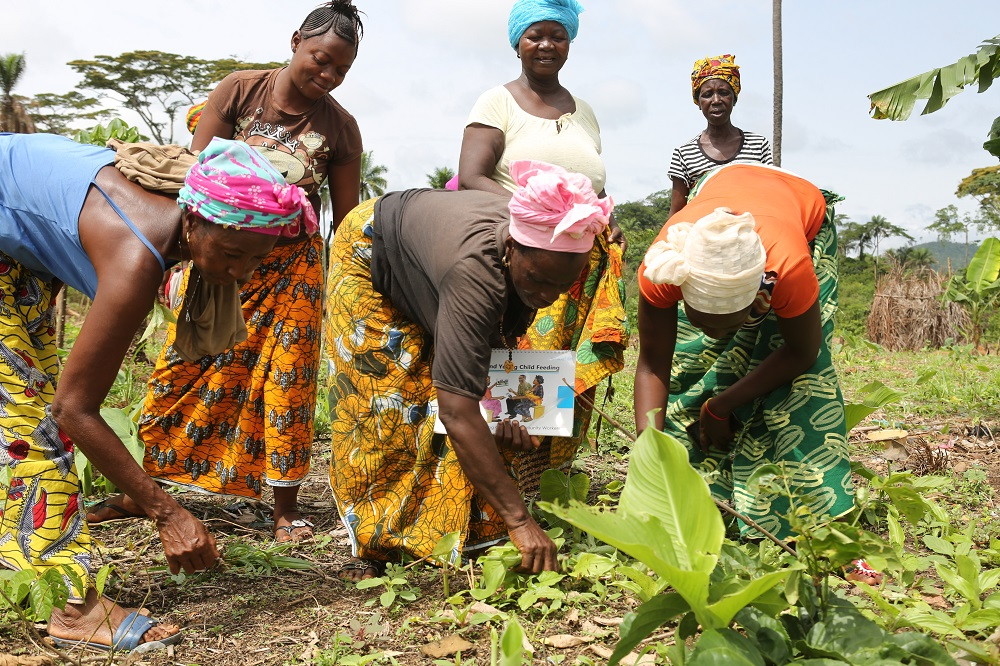 Six women, three standing and three bending over, tend the vegetables they are growing.