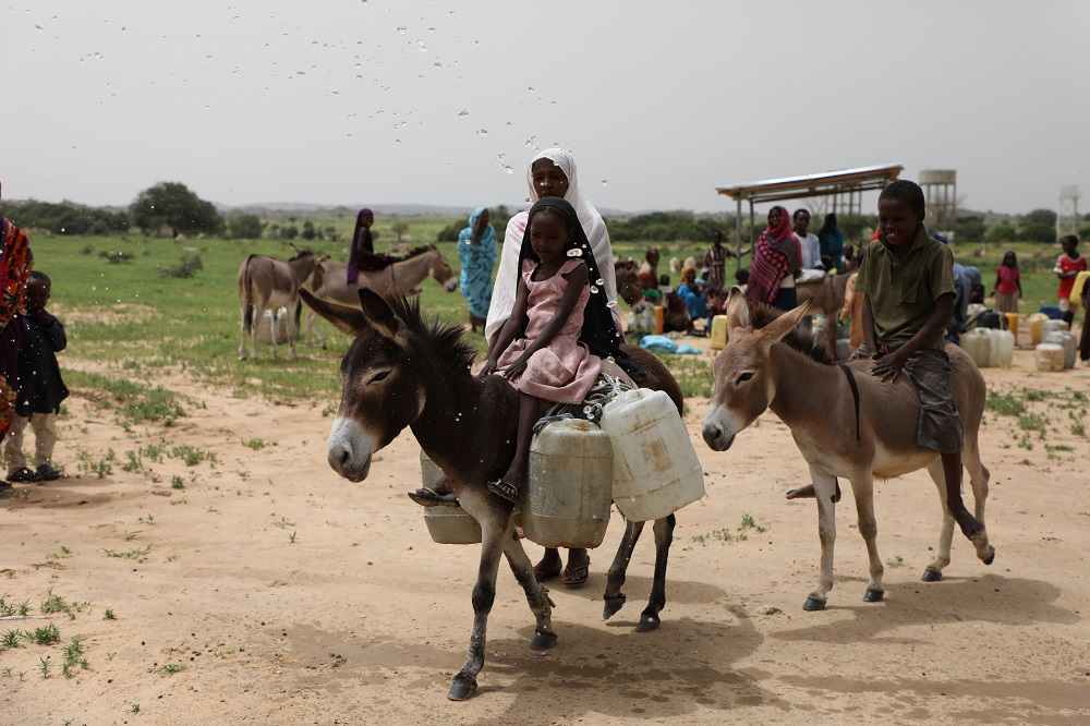 A woman rides a donkey loaded with jerry cans.