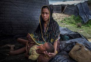 Racing to prevent cholera in Rohingya refugee camps
